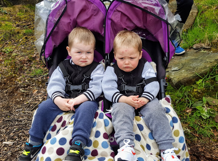 Twins confined to pram