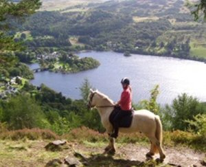 Horse Riding and Pony Trekking in Rob Roy Country